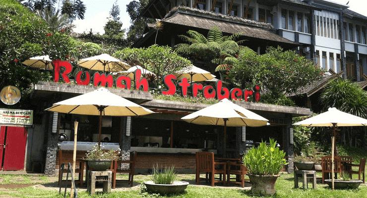 Rumah-Strawberry-Lembang