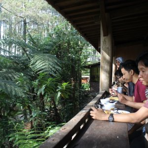 Tempat gathering di bandung utara Terminal wisata grafika cikole lembang
