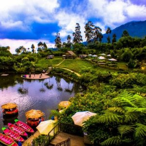 Dusun Bambu - Java Organizer