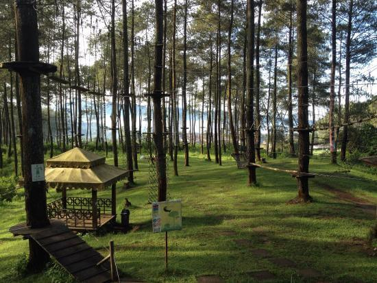 Family Gathering - Bandung Treetop