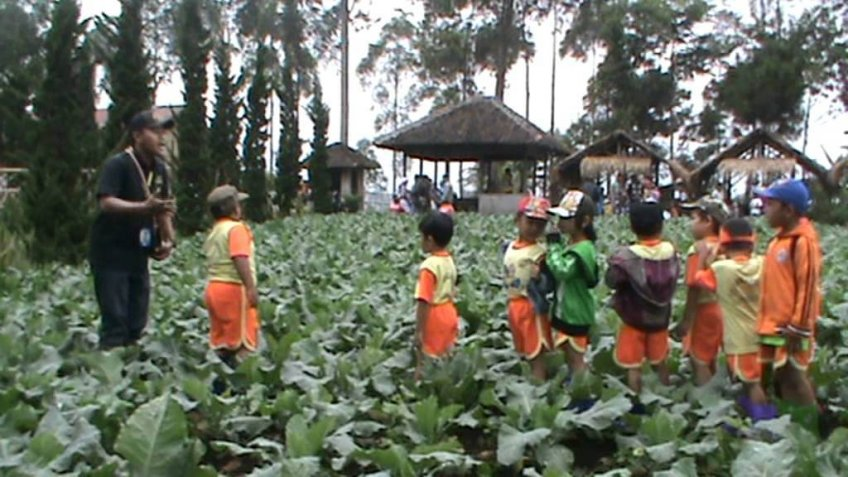 Outbound Gathering - Little Farmers